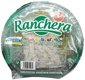 MESTURADOS CANARIOS Ensalada ranchera (lechuga iceberg,col,zanahoria,cebolla roja,maiz,pollo finas hierbas,salsa mahonesa) Tarrina 310 g