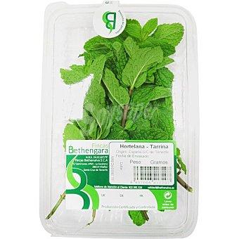 Hierbabuena fresca Tarrina 20 g