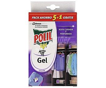 Polil Raid Raid colgador antipolillas en gel perfume lavanda envase 3 unidades + 3 gratis Envase 3 unidades + 3 gratis