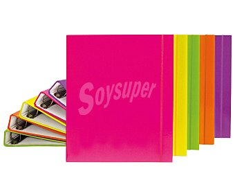 GAFROPLAS Carpeta con tapas de polipopileno forrado de varios colores, de tamaño DIN A4, con 4 anillas de 25 milímetros y lomo sin tarjetero grafoplas. Este producto dispone de distintos modelos o colores. Se venden por separado SE surtirán según existencias 4 anillas