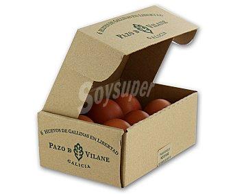 Pazo de Vilane Huevos tamaño L 6 unidades