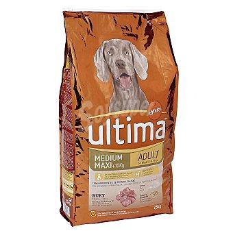 Ultima Affinity Pienso para perros medianos y grandes con buey Saco 7,5 kg