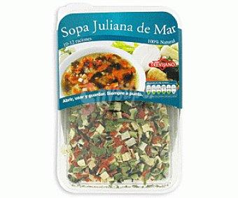 Trevijano Sopa Juliana Caja 100 g
