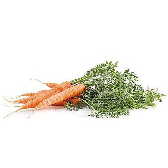 Los satas Zanahorias manojo Bolsa 800 g