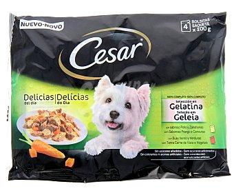 Cesar Comida húmeda para perros adultos pequeños, medianos y grandes Selección Gelatina 4 x 100 gr