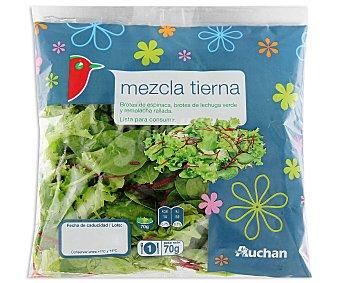 Auchan Ensalada de brotes de espinaca, brotes de lechuga verde y remolacha rallada 70 gramos