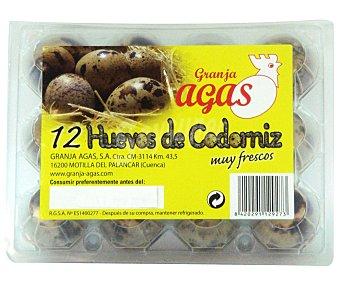 Granja Agas Huevo de codorniz Paquete 12 u