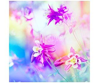 IMAGINE Cuadro con las imágenes de unas preciosas flores y dimensiones de 50x50 centímetros 1 unidad.