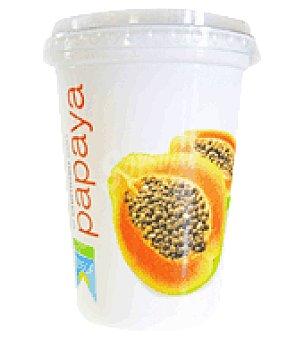 Teisol Yogur con papaya 500 g