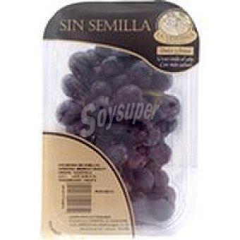 Uva negra sin semilla 500 g