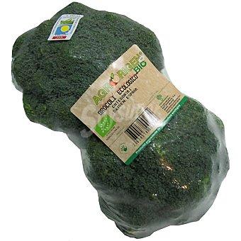 Brócoli penca ecológico peso aproximado envase 500 g