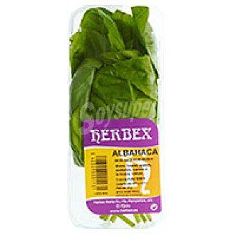 Herbex Albahaca Bandeja 20 g
