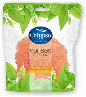Calypso Esponja flor passión 1 ud