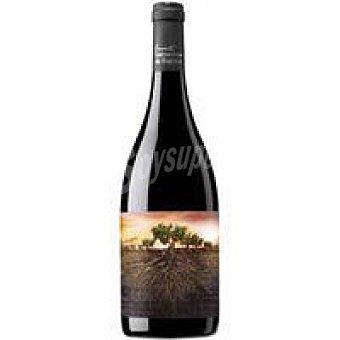 OLVIDADA de ARAGÓN Vino Tinto Crianza Calatayud botella 75 cl