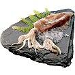 Calamar elaborado mediano peso aproximado pieza 400-600 g