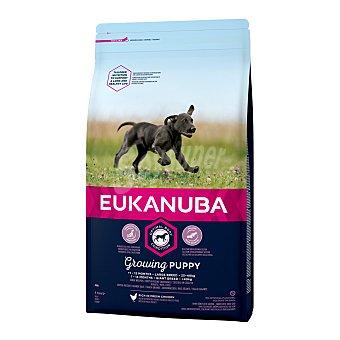 Eukanuba Pienso para perros grandes cachorros Large Puppy Pollo 12 Kg