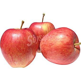 Manzana royal gala extra 100 g (venta al peso)