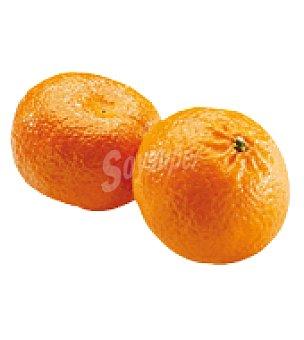 Mandarina de Cádiz Bolsa de 1000.0 g.