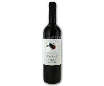 ENATE Syrah Vino tinto Botella de 75 Centilitros