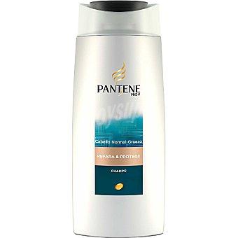 Pantene Pro-v Champú repara-protege Bote de 500 ml