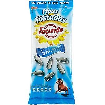 Pipas Facundo Pipas tostadas sin sal Bolsa 100 g