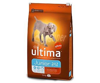 Ultima Affinity Pienso para perros cachorros raza mediana y grande con pollo y arroz Saco 7,5 kg
