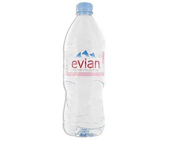 Evian Agua Mineral Natural  Botella 1 L