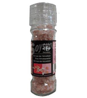 Carrefour Selección Sal rosa del himalaya 108 g
