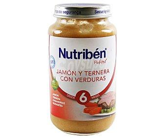 Nutribén Potito de jamón-ternera-verdura 250 g