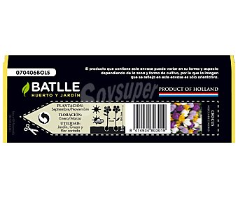 Batlle Bolsa con 10 bulbos de Crocus de diversos colores y calibre 7/8 BATTLE 10u
