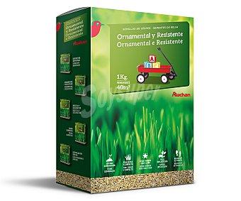 Auchan Semillas para plantar cesped ornamental, resistente al pisoteo 1 kilogramo