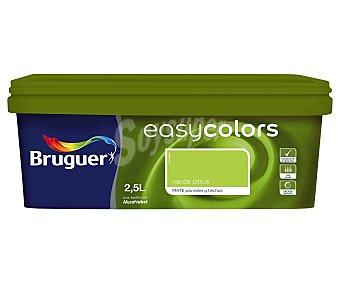 BRUGUER Pintura plástica acrílica decorativa, de color verde citrus, de la serie Easy Colors 2,5 litros