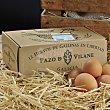 Huevos morenos de gallinas camperas Estuche 12 unidades Pazo de Vilane