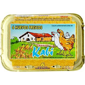 TOLOSA Huevos morenos clase XL Estuche 6 unidades