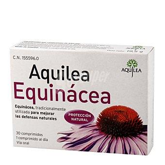 Aquilea Equinacea 1 ud