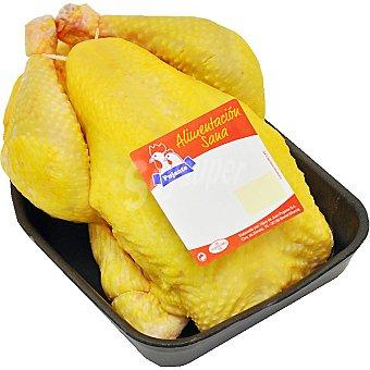 PUJANTE Pollo de campo peso aproximado bandeja 2,9 kg Bandeja 2,9 kg