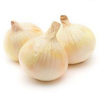La rioja Cebolla dulce de al peso, compra mínima