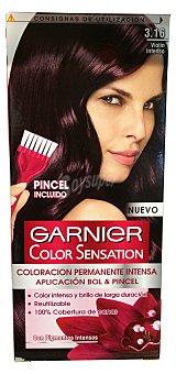 Garnier Tinte coloración permanente sensation Nº 3.16 violín intenso 1 unidad