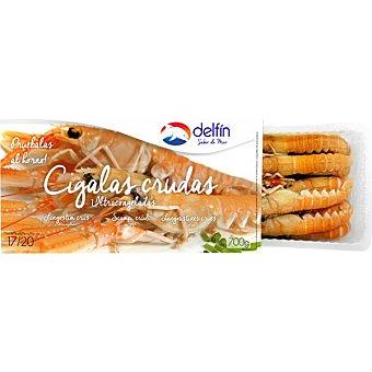Delfín Cigalas crudas 17-20 piezas Estuche 700 g neto escurrido