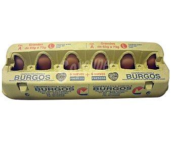 SOC. BURGOS Huevos clase L 12 Unidades