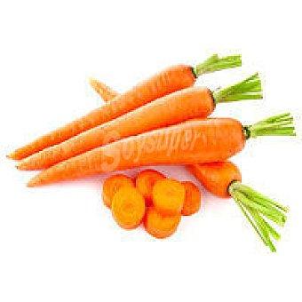 Zanahoria 1 kg
