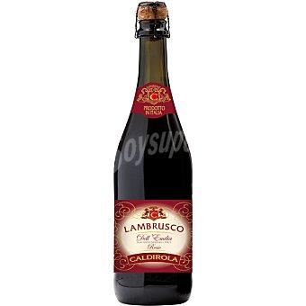 CALDIROLA Vino tinto lambrusco Dell 'Emilia de Italia  botella 75 cl