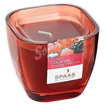SPAAS Vela Perfumada en vaso de cristal aroma Cocktail de Mora