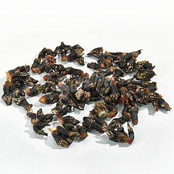 Percebes marroquíes medianos crudos 100 gramos