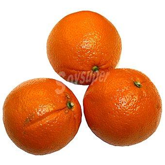 Naranjas de zumo del país al peso