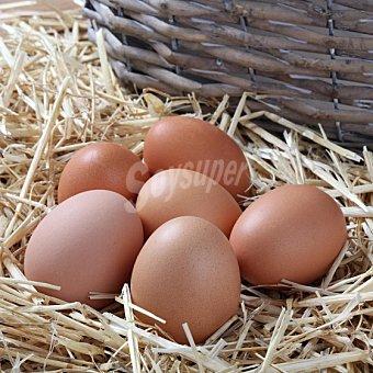 Granja Huevos ecológicos Bovelars 6 ud Blister 6 ud