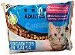 Comida gato adultos bocaditos salsa (gamba, bacalao, guisantes, zanahorias) + (trucha, salmon, guisantes, zanahorias) Sobre pack 4 x 100 g - 400 g Lucy