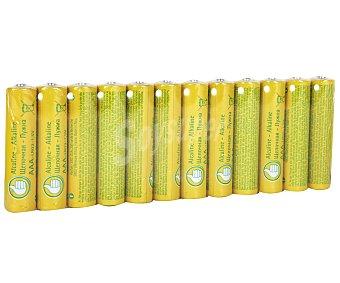Productos Económicos Alcampo Pilas Alcalinas AA LR06 1,5V Pack de 12 unidades