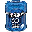 Chicles trident menta 1 paquete  60 Minutes