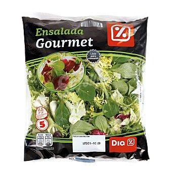 DIA Ensalada gourmet bolsa 175 gr Bolsa 175 gr